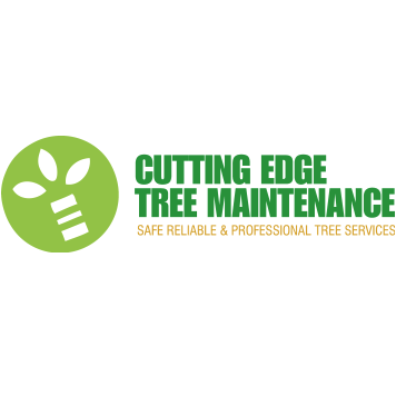 Newcastle Tree Removal Team Provides Free Quotes In Preparation For Storm Season