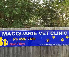 Macquarie Veterinary Clinic