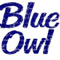 Blue Owl Cafe and Restaurant Logo