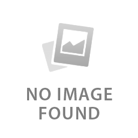 The Dizzy Witch Café Logo