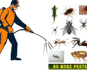 City Pest Control Services