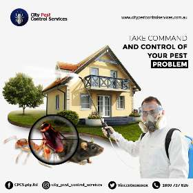 City Pest Control Services Canberra