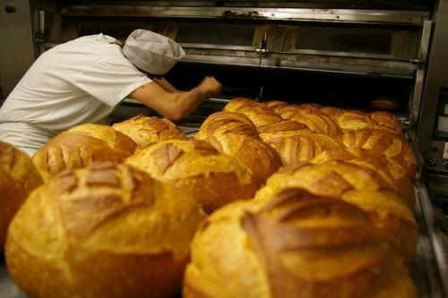 A Good Recipe to Pick the Best Bakery