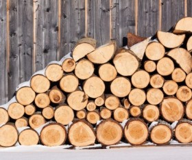 Why You Should Choose Timber?