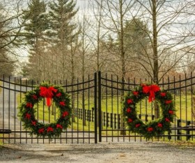 Maintenance Tips for Iron Fences and Gates