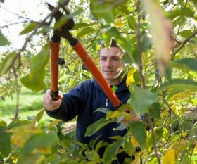 Tree Pruning Methods